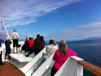 many days in out out of inlets and passages allowed for great whale watchin