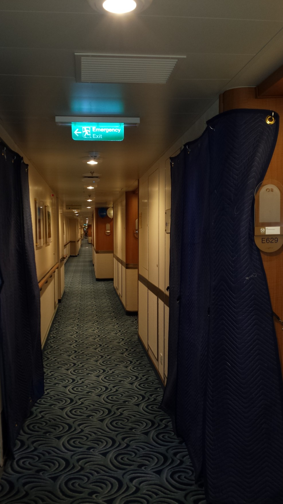 The Blue Quilted Fabric covering my door at embarkation and debarkation.