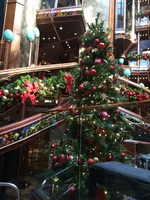 Christmas aboard the Paradise.