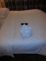 Swan was aice touch in our room after long day on shore excursion