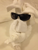 Towel art by our friendly Cabin Steward