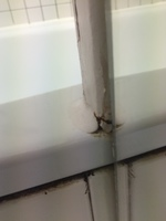 Cracked unit in bathroom