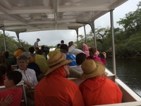 New River and Mayan Ruins excursion in Belize