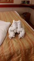 1st Night of the Cruise ... Frog towel animal