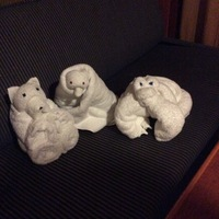 Towel animals, our granddaughters loved it.