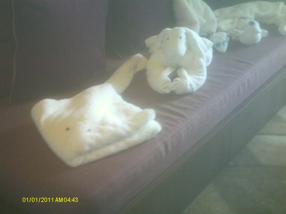 some of the animals by the room steward sitting on the sofa bed in suite