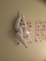 One of the great towel creations by Rodel our cabin steward
