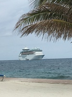 The Majesty from Cococay Beach