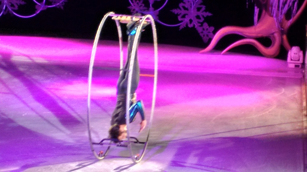 Ice Spectacular was really great!