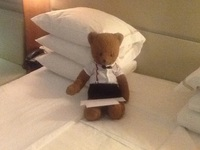 Jeffrey D. Bear reviewing the daily program.