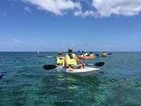 Oceania Kayak & snorkel excursion in Roatan, gorgeous water and great snorkeling