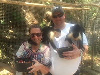 This was at Maya Key Private Island in Roatan. Our Favorite part was holding the monkeys