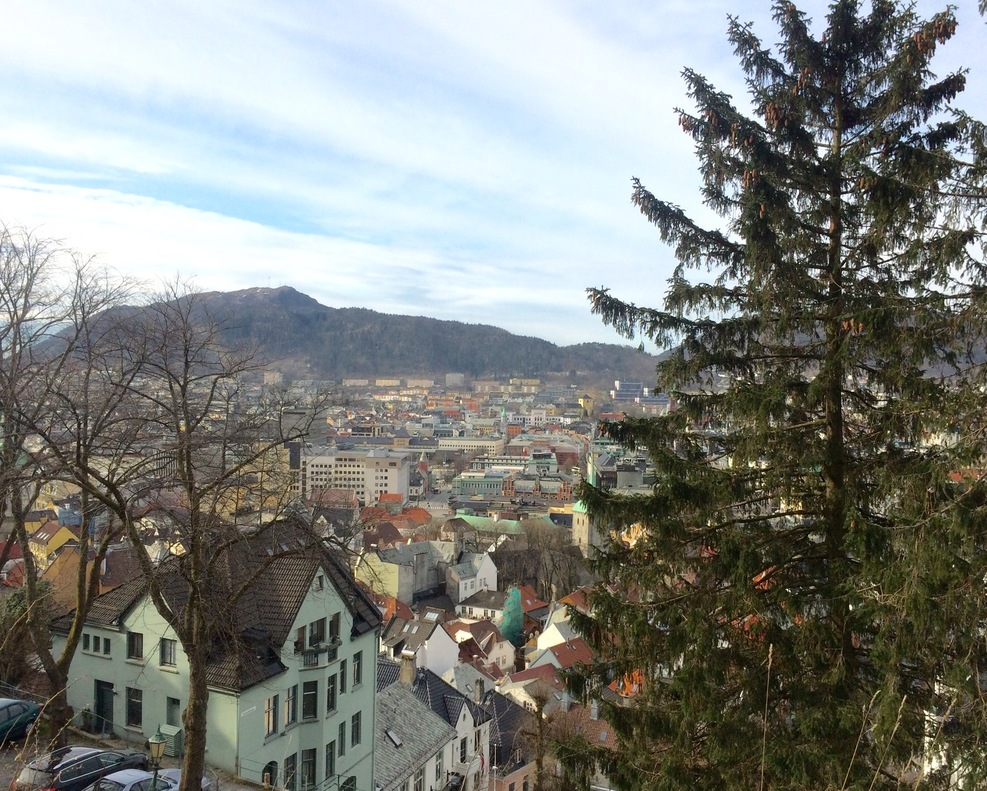 Top of mountain view of Bergen