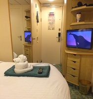 Our towel animal watching tv in our stateroom