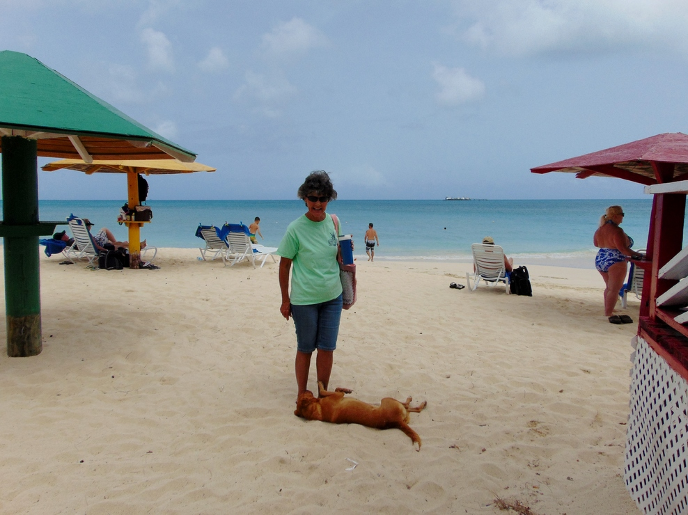 My mom petting the resident stray dog on Runaway Bay, Antigua