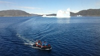 A small 10-pax boat used to explore stationary icebergs from MS Fram in sou