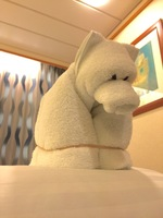 "Towel animal ""Bear"""