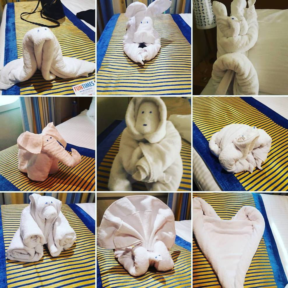 Towel animals in the cabin