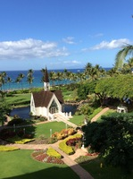 This is a view from a magnificent Resort Hotel on the Island of Maui. I took a beach day excursion. Cruisers are allowed to explore this resort. Rooms begin at $400 a day. Oprah rents the entire hotel a full week every for her friends, family and staff.