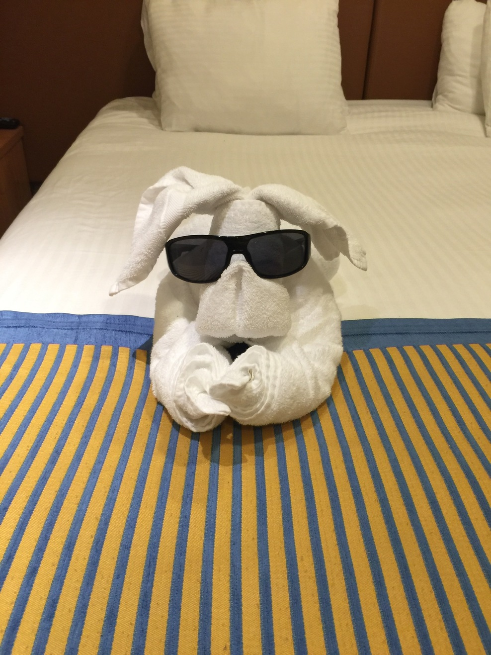 Nightly towel animal just for a laugh.