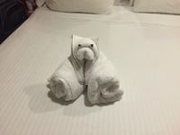 They will make animals out of towels.