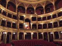 Budapest opera house - optional excursion