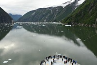 Sailing Tracy Arm Fjord (one of the highlights of the trip)