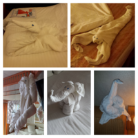 Our cabin Stewart John left us little friends each day with his creative towel animal friends. It was always a treat to see what new animal would greet us after dinner with our daily ship news for the following day.