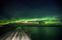 Auroras from the stern of the Coral Princess.