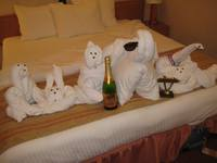 Towel animal party in the room