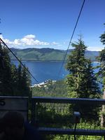 Icy Strait Point - Top of mountain at ZIp Line Entrance