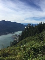 View of Juneau from top of the tram.