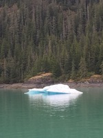 Floating ice on the way to Glacier Bay