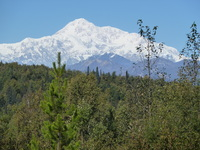 Mt Denali from Mt. McKinley Princess Wilderness Lodge during land portion o