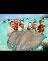 Stingray sandbar in Grand Cayman!