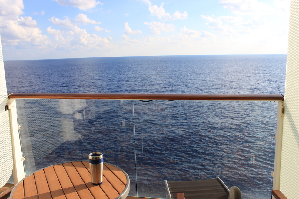 Celebrity Silhouette Cruise Ship - Reviews and Photos ...
