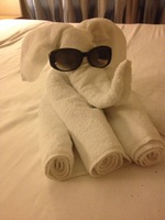 Towel animal.