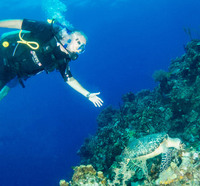 Scuba Diving in Roatan~ Turtle seemed very accustomed to divers. It was int