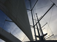 Wind Surf's sails