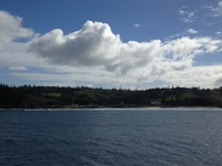 View of Norfolk Island from the ship. This is as close as we got.