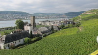 Riding a gondola over the vineyards during an excursion in Rudesheim, Germa