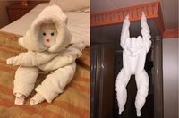 Two of the towel animals folded by my stateroom steward.