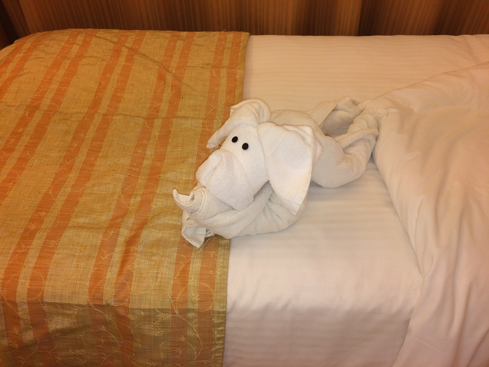 Stateroom 7147 and Towel Animal.