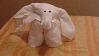 Always love our towel animal from our steward each evening!