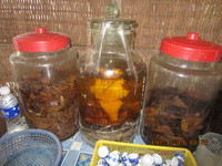Snake wine Cai Be.