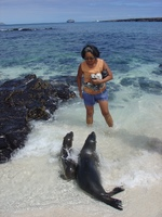 sea lions are the friendliest animals in galapagos