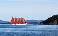sailing ship in Bar Harbor harbor