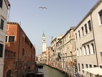 This is my favorite photo from Venice Italy, as well as my favorite photo from the entire World Cruise.