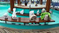 Farewell towel animals! Thanks for a great cruise!