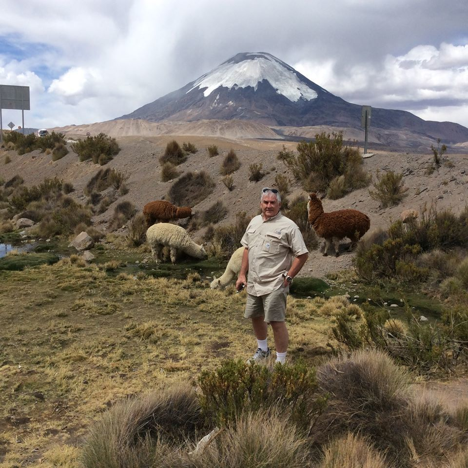 Visiting the llamas and alpacas in the Andes above Erica Chile